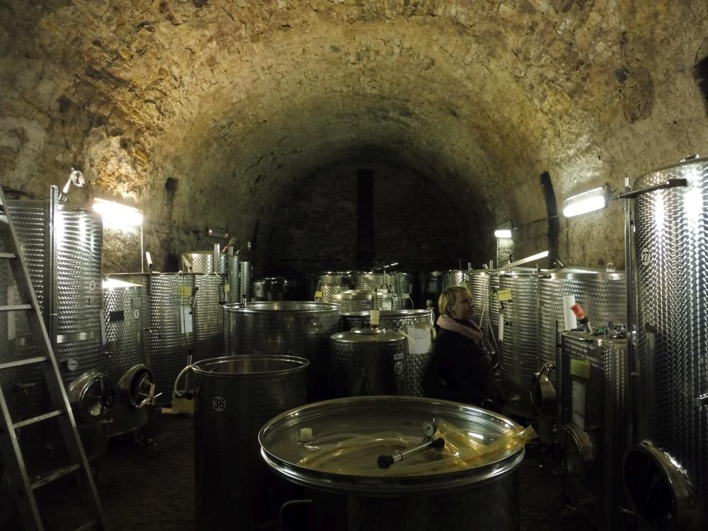 Weingut Rollsdorfer Mühle Keller Saale Unstrut Wein
